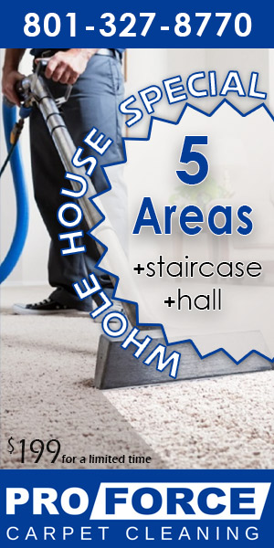 5 Rooms + Stairway + Hall = $199