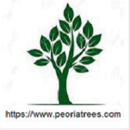 Icon for Peoria Trees